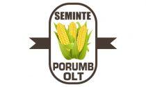 seminte-olt-logo-creare-site